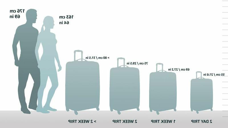 AmazonBasics 3 Piece Carry-On Spinner Luggage Set -